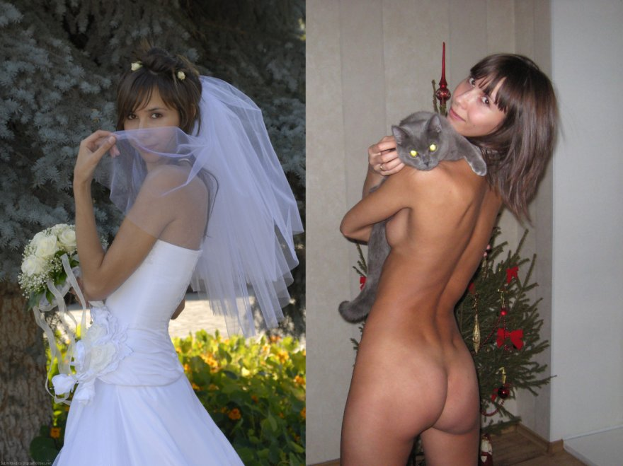 Wedding Gown And Pussy Cat Porn Photo
