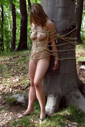 amateur photo Outdoor rope play