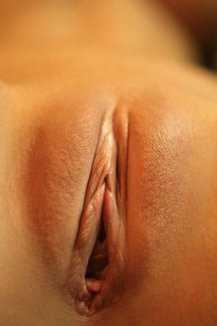 Vanessa bell calloway nude on shameless