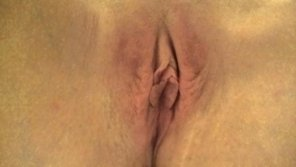 amateur photo My favorite pussy...