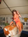 amateur photo Adorabull