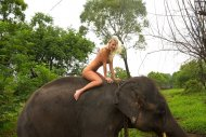 Happy blonde babe awkwardly riding an elephant