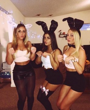 amateur photo Bunny Honeys