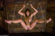 Intricate Suspension