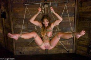 amateur photo Intricate Suspension