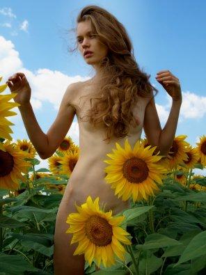 amateur photo Big flowers