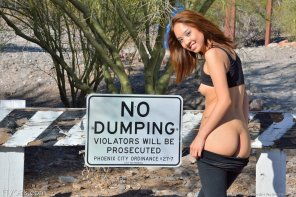 amateur photo No Dumping