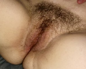 amateur photo My 36 year old hairy pussy