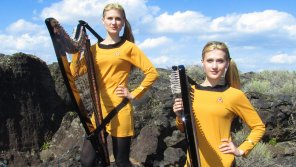 amateur photo The Harp Twins for Trekkies.