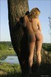 amateur photo Nice trunk