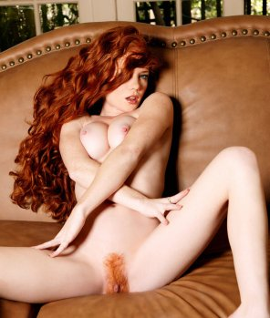 amateur photo Tasty Ginger Bush