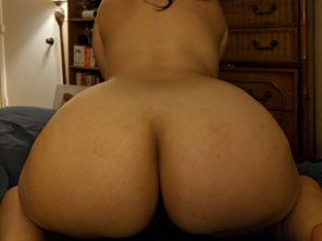 amateur photo You guys like [f]at asses?