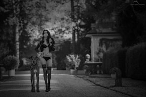 amateur photo walk the dog by Herbst07