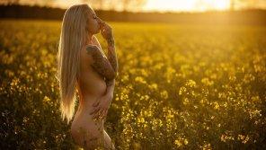 amateur photo Blonde in a field.