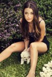 amateur photo Cute puppy...