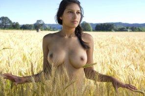 amateur photo Golden