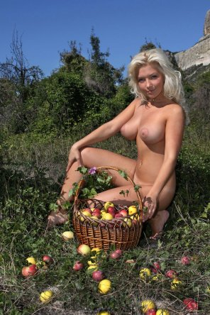 amateur photo Apples