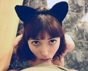 amateur photo Kitten eyes