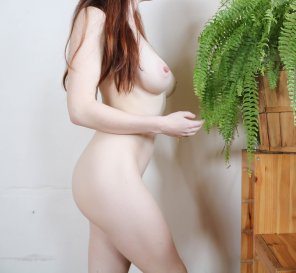 amateur photo Good morning! Here's my pale body + ferns 🌿😍 [OC]