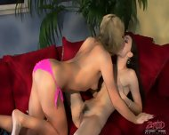 Pussy Cats Play Each Other - scene 7
