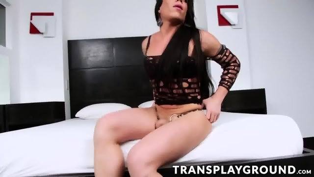 Curvy latina tranny Ariane de Briho plays with her big dick - scene 3