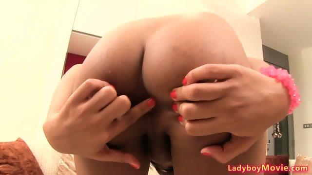 Ladyboy Pancake Bareback n Creampie - scene 3