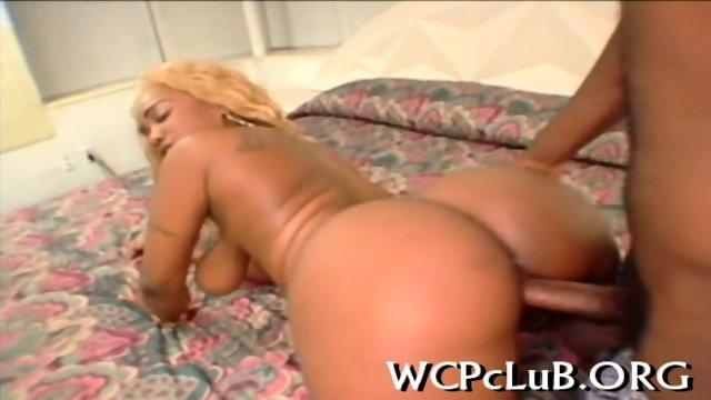 Interracial xxx action - scene 2