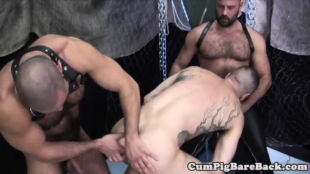 Mature Bear Gay Sex