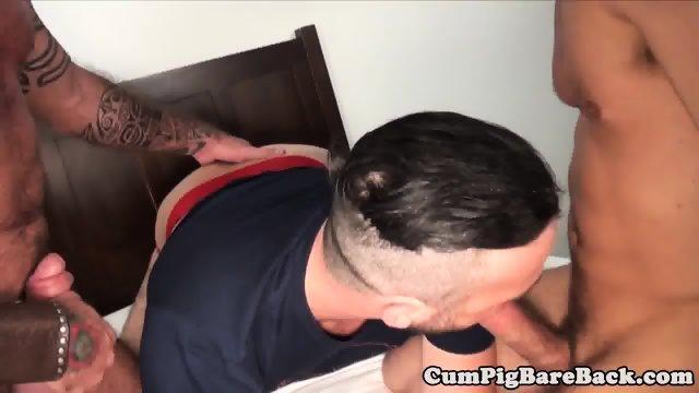 Ripped mature bear cocksucks in bareback trio - scene 9