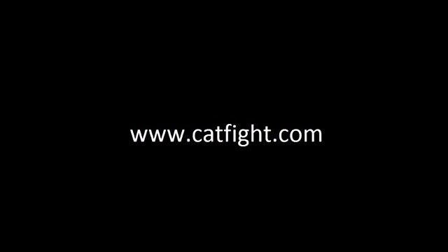 School Girl Pins Series in Catfight