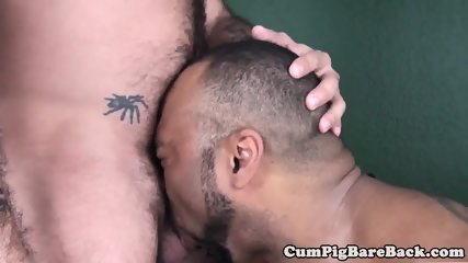 Black bareback bear assfucking mature