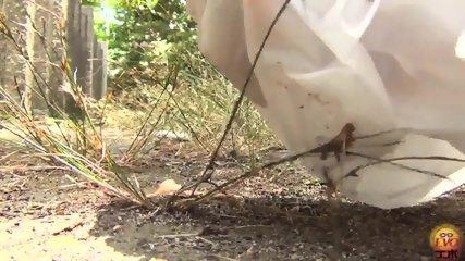 Pooping Outdoor - scene 11