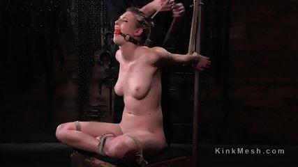 Brunette slave flogged in several hogties