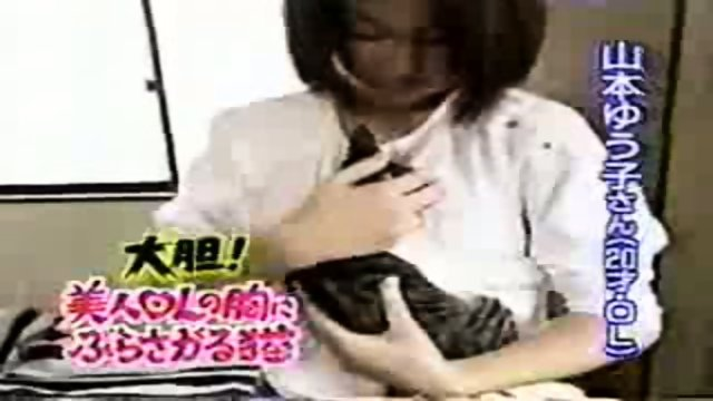 Breast feeding a Cat