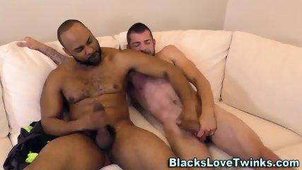Stud Cums For Black Bear