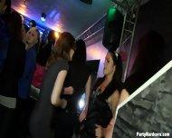 Sluts At Hardcore Party - scene 10
