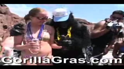 Gorilla At Lake Havasu Spring Break - scene 5