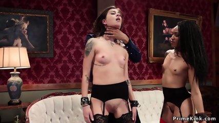 Black Ebony Anal Porn