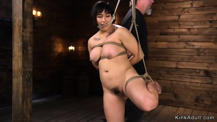 Chubby busty Asian pussy toyed in hogtie