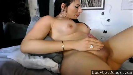 Transsexual slut