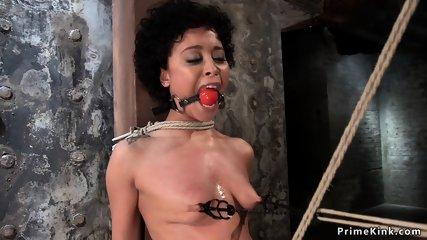 Two ebonyies nipples and cunts tormented