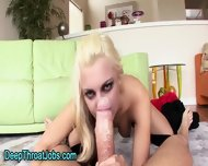 Throated Blonde Swallows - scene 9