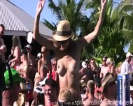 Pool Party Chicks - scene 2