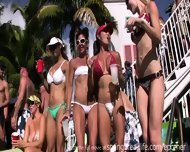 Wild Pool Party - scene 8