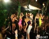 Naughty Body Assets Sharing - scene 8