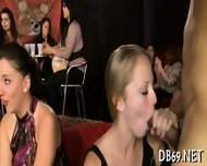 Lively Pecker Sucking Delights - scene 6