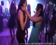 Nightclub Party Girls - scene 11