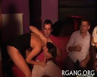 Studs Satisfy Nasty Sluts - scene 7