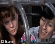 Upside Down Babe Gives Blowjob - scene 10