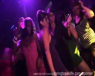 Hot Girls Clubbin - scene 5